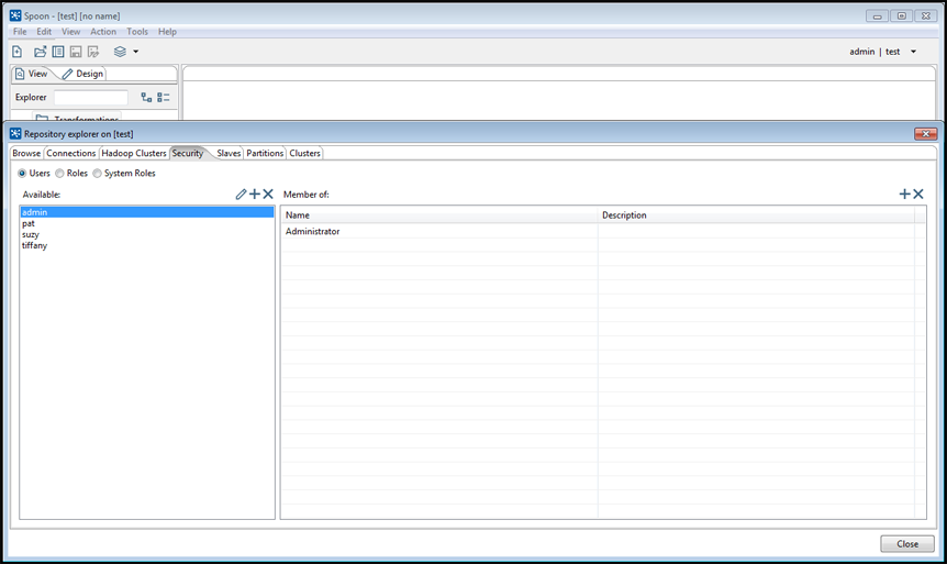 Security tab in the Repository Explorer